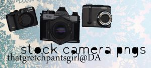 camera png stock by thatgretchpantsgirl
