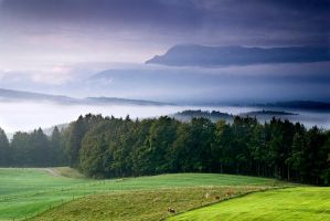 Bavaria morning VI by mutrus