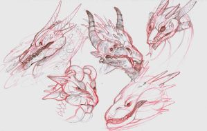 Dragon Sketches by Tokyozilla