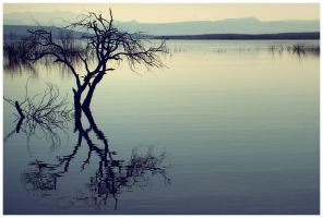lonely_lake by fuamnach