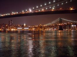 The Bridges of NYC by Erica-Danes