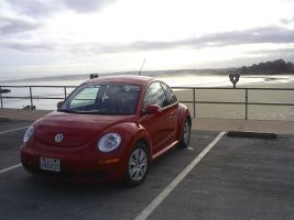 Traded Mustang for VW TDi bug by Partywave