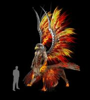 LAND OF NEVES : Alicor the fire falcon by TMProjection