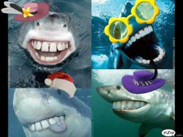 SHARKS WITH HAT'S AND GLASSES by LizardQueen00999