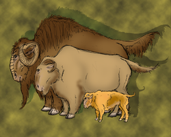 Raileshian Bison by Jerepasaurus