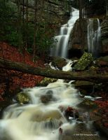 Fall, New River Gorge by TRBPhotographyLLC