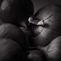 Rembrandt lighting - Sketch I with onions by teyasaveleva
