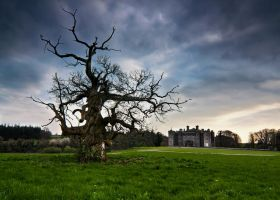 Slane Castle by NosIreland