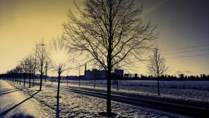 Winter day by MarvinOs