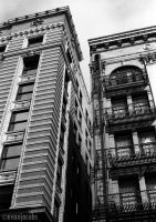 Downtown Buildings by evanjacobs