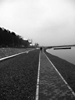 BW  road by DR13agoslav