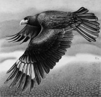 Flight in Ballpoint Pen by ronmonroe