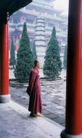 The Monk by aladhan