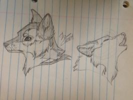 Sketch- wolf practice  by Anyahs