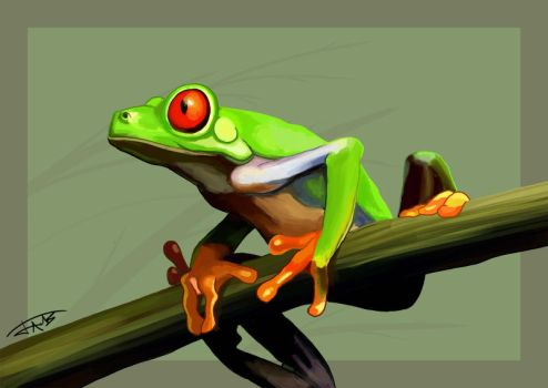 Frog by Jats