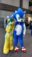 Me and A Lovely Furryfox. by SonicRingBomb