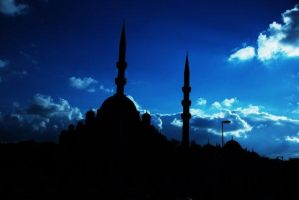 Seagull and Mosque-1 by tahaerakay