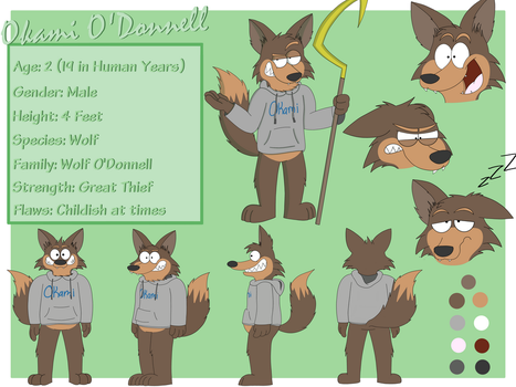 Commission: Okami O'Donell Ref Sheet by RonRaccoon