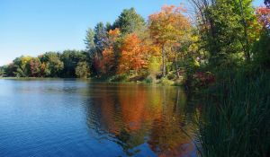 Broad Brook Pond by barcon53