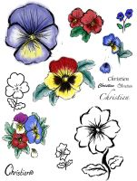Pansy Remember Tattoo.. by xAli-xX