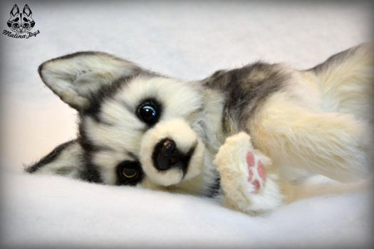 Poseable toy commission :Husky puppy by MalinaToys