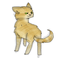 The Thomas by RockpeltThunderClan