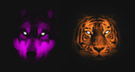 Wolf and Tiger Wallpaper by LegendaryRey