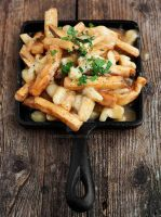Poutine and Fries by Minicoops