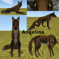 Angelina Feral-Heart Adoption -Open- by AdoptablesOfAllKinds