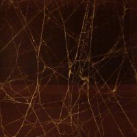 Seamless Spiderweb Texture by FantasyStock