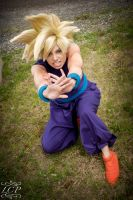 DBZ - Super Saiyan Gohan 2 by LiquidCocaine-Photos