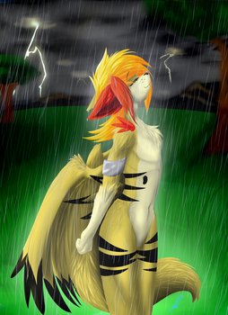 Brightening the Storm (Contest Entry) by ShadowPoni