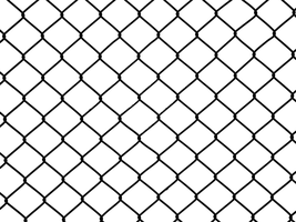 Transparent Wiremesh 2 by Limited-Vision-Stock