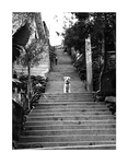 Stairway to Heaven by Lordsiyei
