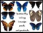 seiyastock butterfly images by seiyastock