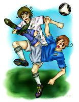 APH: WC 2010- Italy NewZealand by FrauV8