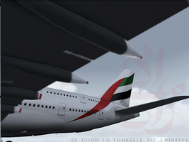 Emirates: The flag carrier by tbggtbgg