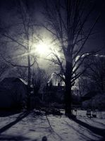 winter stock image4 by virnagray
