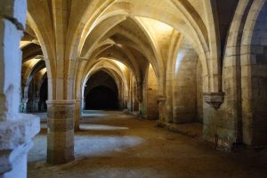 Vaults at Soisson by noelholland