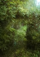 A Door in the Forest - Premade BG by HermitCrabStock