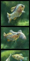 Fishes of the Carbonera by albertoguerra