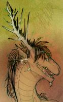 Smile :) by Galidor-Dragon