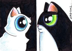 Funny cats smith and Jones by KingZoidLord