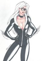 Black Cat by RobertMacQuarrie1