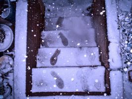 Snow Covered Stairs. by theblueofmyoblivion