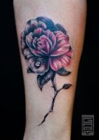 Rose Black and Red by AbrahamGart