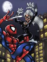 Spider-Man vs. Black Cat COLORS by MadcapLLC