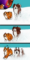 Corgi's can't be first II by momodory09