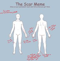 Scars Meme by ImHerMonster