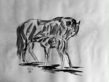 #26 Drawing a horse a day 2015 by Nienke15